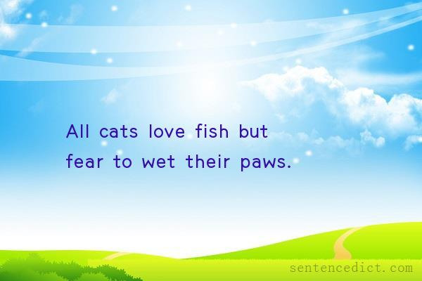Good sentence's beautiful picture_All cats love fish but fear to wet their paws.
