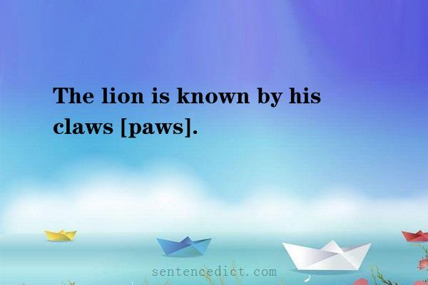 Good sentence's beautiful picture_The lion is known by his claws [paws].